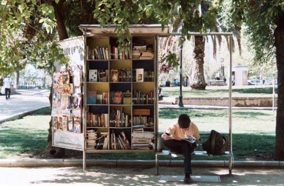 boy reading beside bookshelf in the park