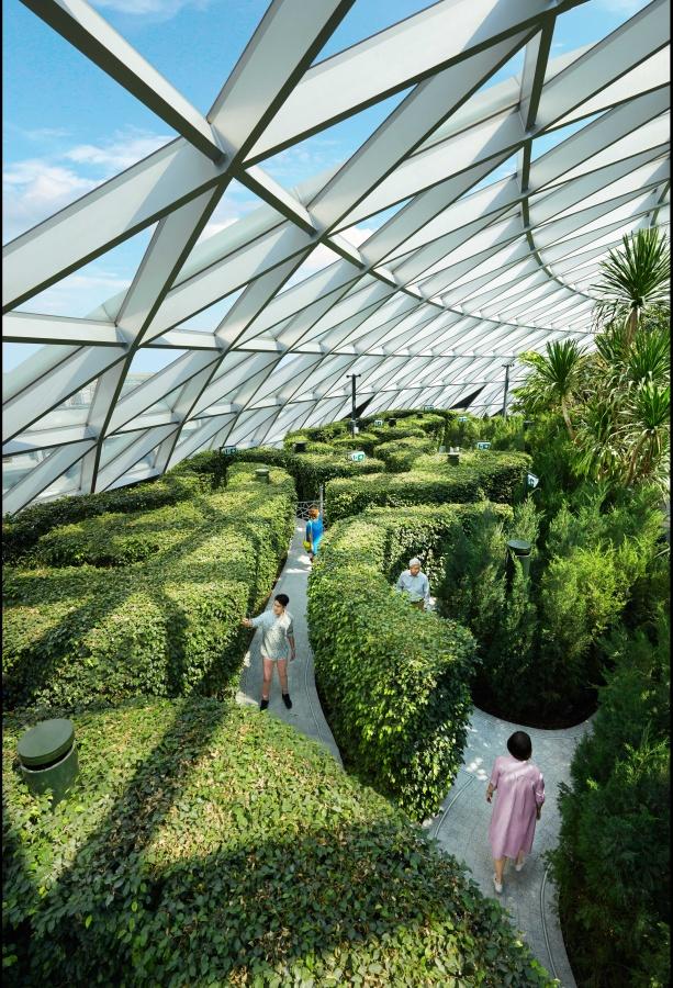 Jewel Changi Hedge Maze