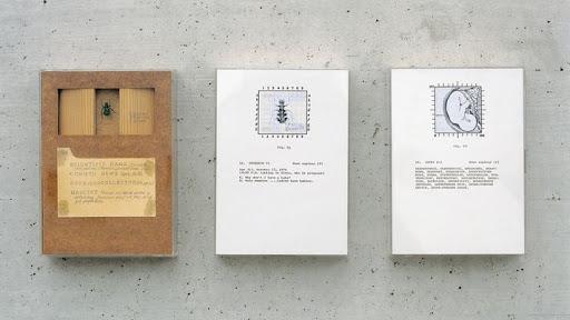 fine-art-mary-kelly-post-partum-document-generali-foundation